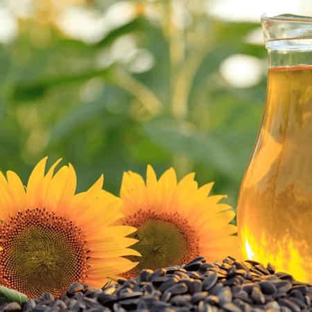 Bild-rohstoff-450x450-sonnenblumen