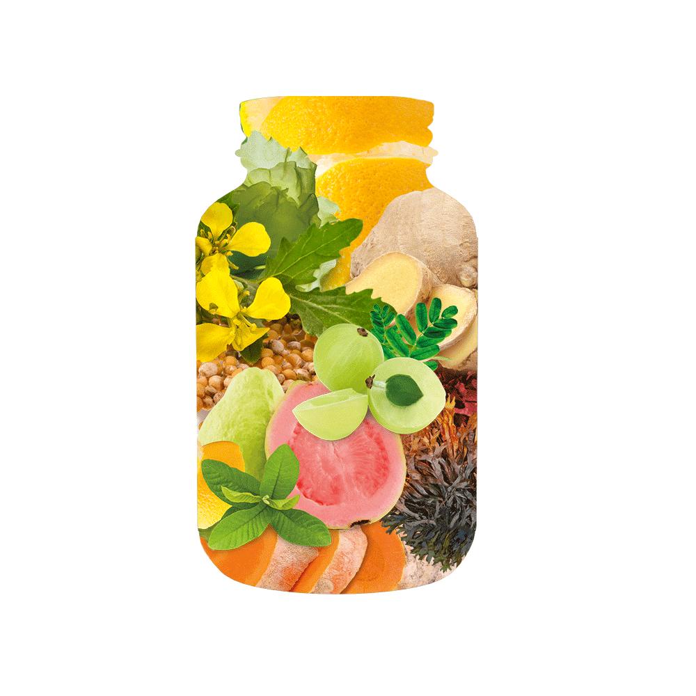 Phytholistic-kapseln-caps-vitamin-mineral-natuerlich