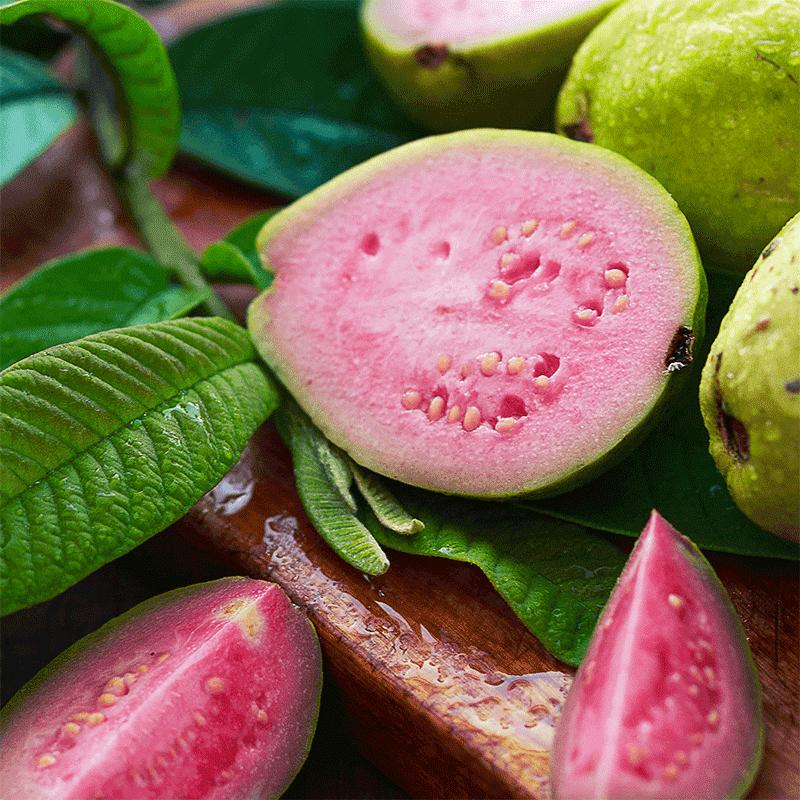 bio-guave-vitamin-b