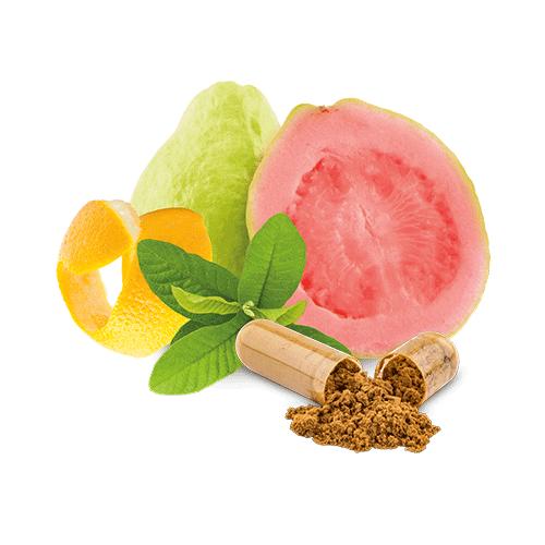 guave-vitamin-b-kapsel-bio
