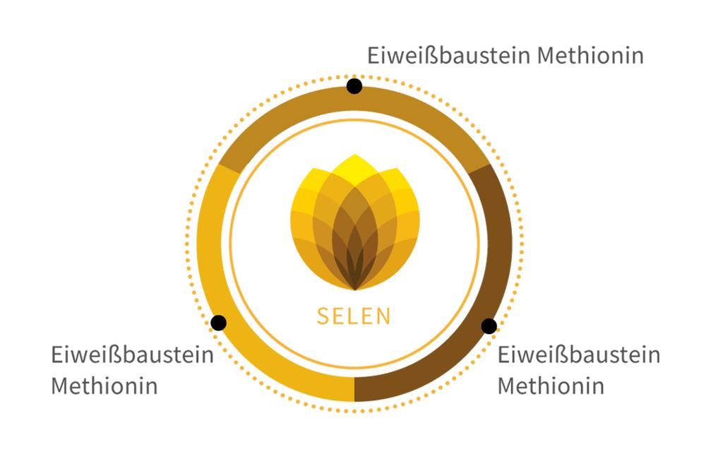 selen-natuerlich-komplex