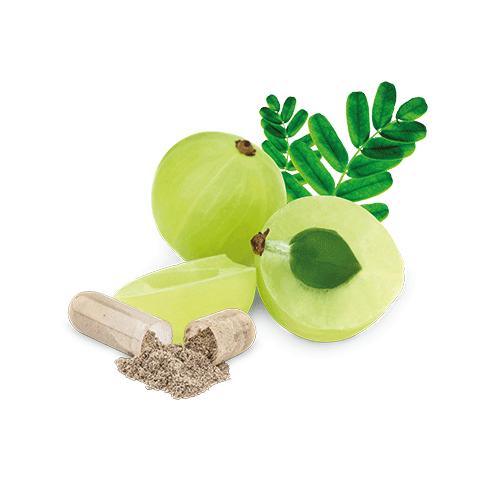 vitamin-c-amlabeere-kapsel-bio