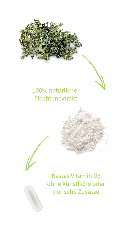 vitamin-d3-flechte-vegan