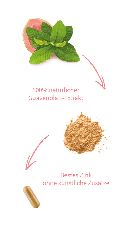zink-bio-guavenblatt