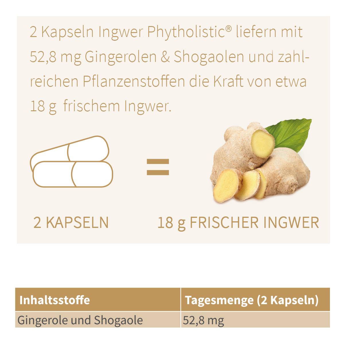 ingwer-kapseln-bio-rein-pflanzlich-gingerin-phytholistic-60-stueck-grafik-dosierung-1200x1200