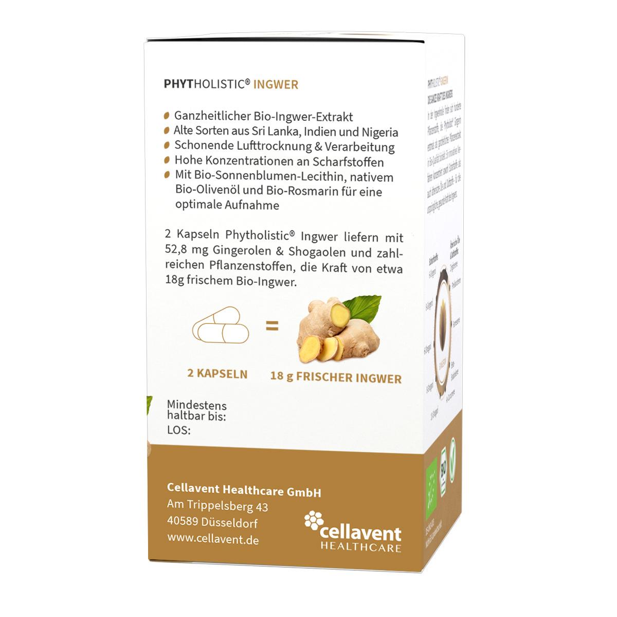 ingwer-kapseln-bio-rein-pflanzlich-gingerin-phytholistic-60-stueck-verpackung-rechts-1200x1200