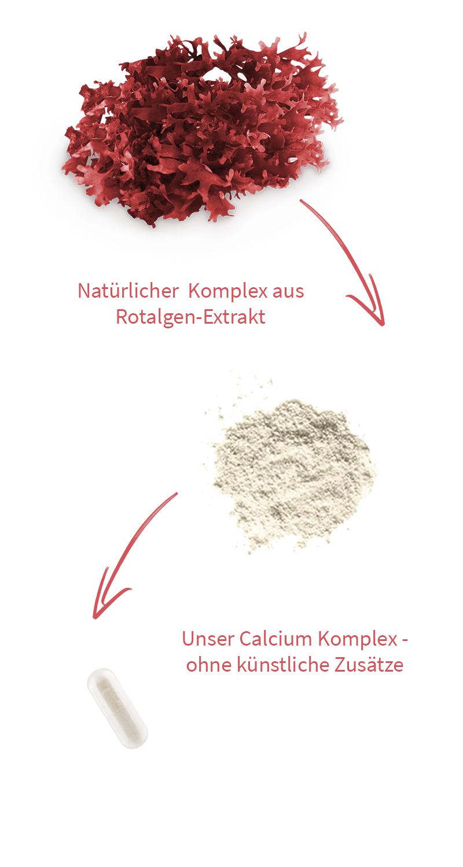 mobil-rotalgen-calcium